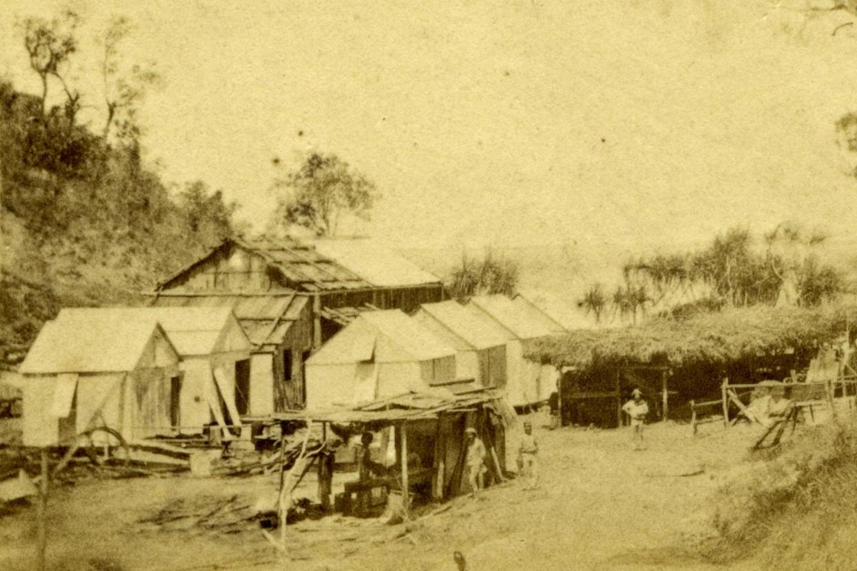 Main Camp and stables, 1869