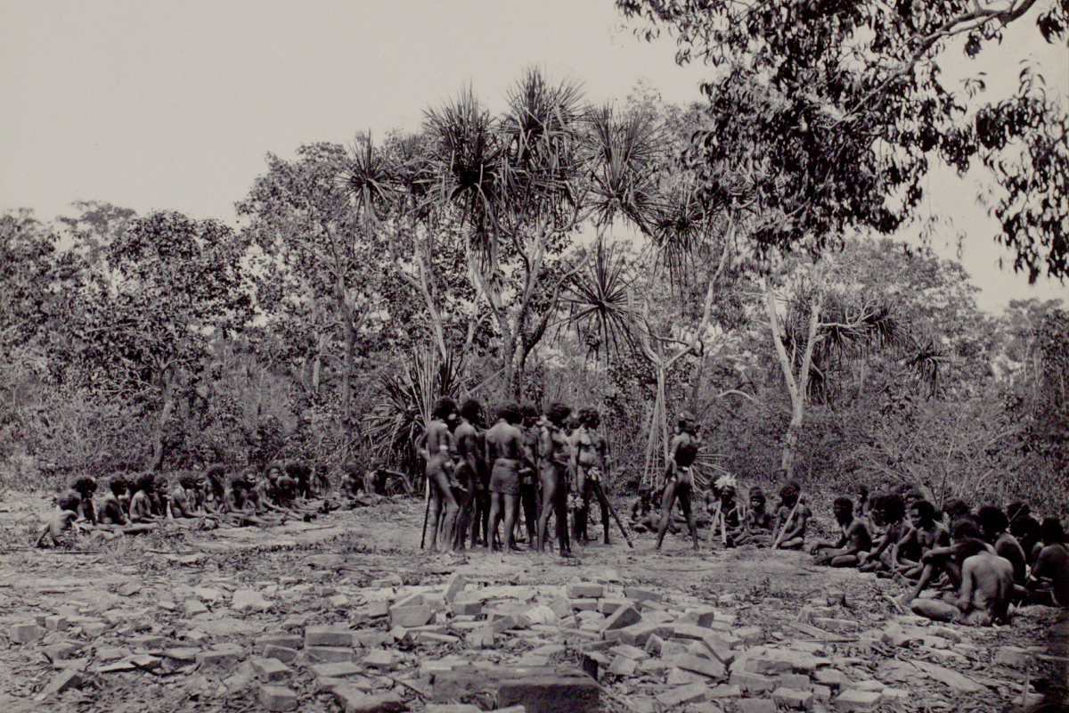 A group of Aboriginal men prepare for dance, surrounded by a seated audience of Aboriginal men, women and children. In the background is a stand of pandanus and in the foreground are piles of bricks from the old Port Essington settlement.