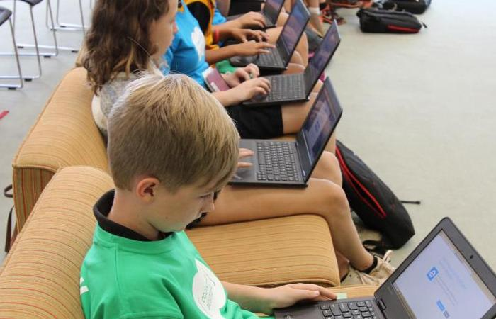 Students using laptops