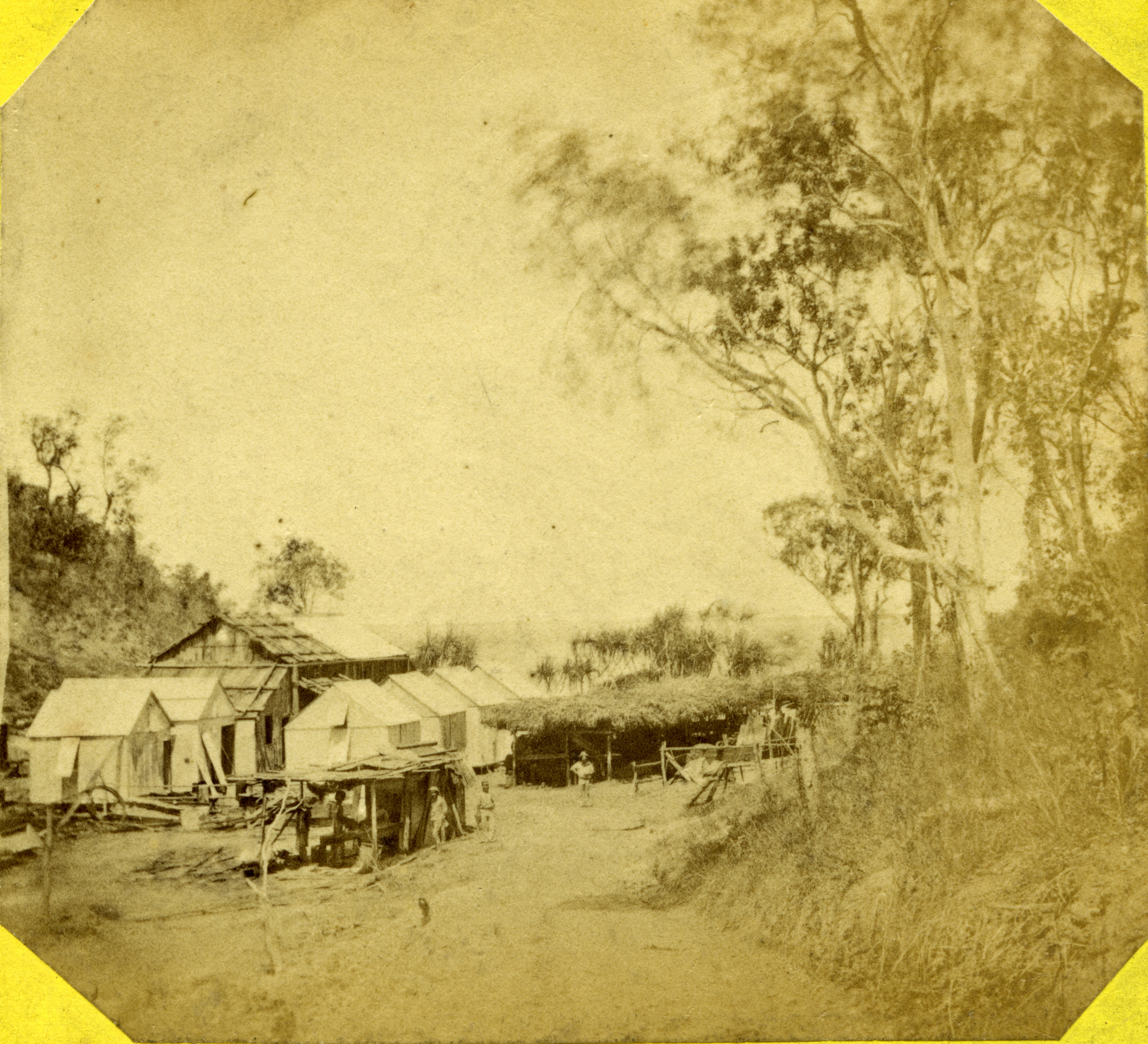 Main Camp and stables roofed with bark, 1869