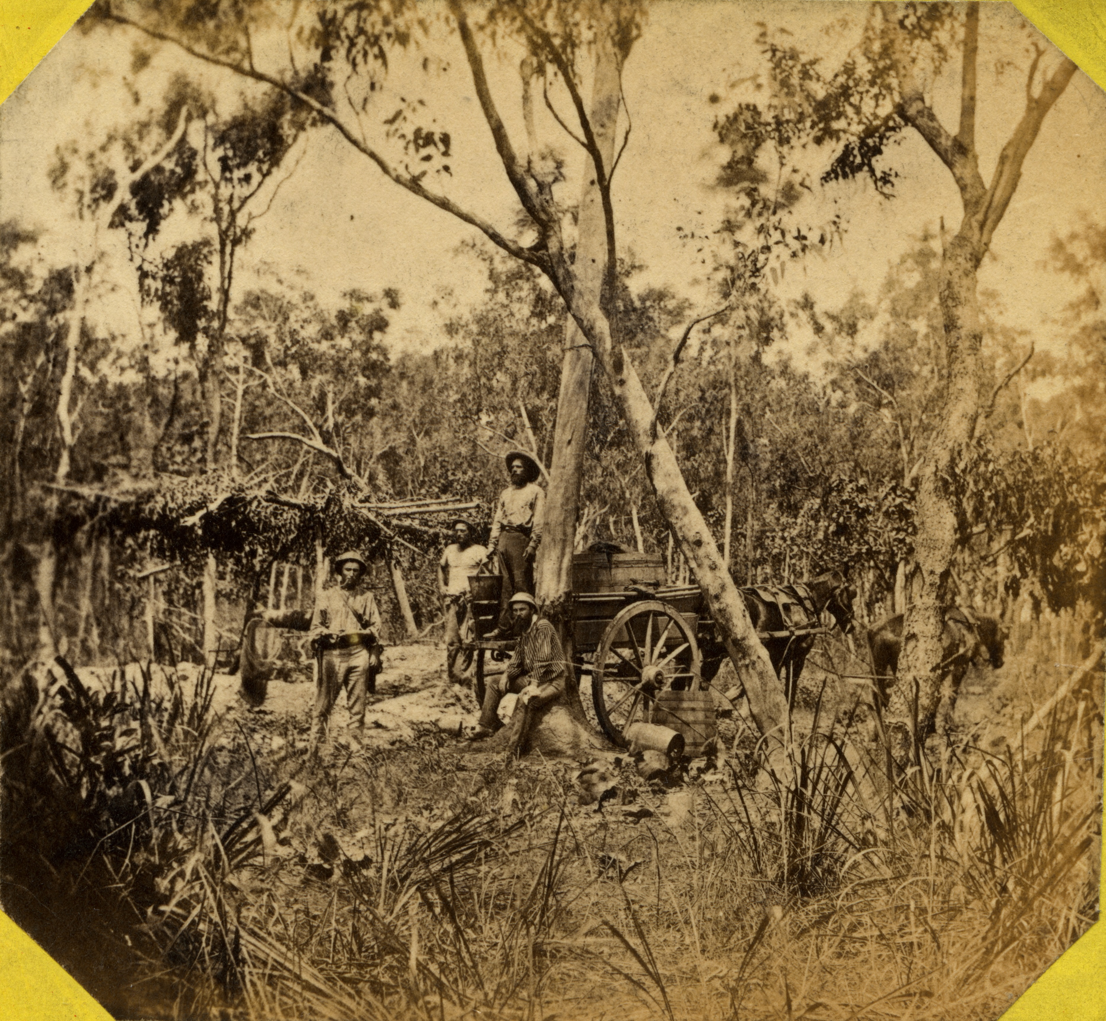 Collecting water from the Government well, Doctor's Gully, 1869